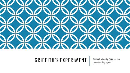 GRIFFITH'S EXPERIMENT SWBAT identify DNA as the transforming agent.