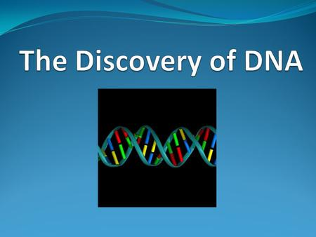 The Discovery of DNA.