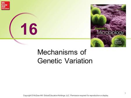 Mechanisms of Genetic Variation 1 16 Copyright © McGraw-Hill Global Education Holdings, LLC. Permission required for reproduction or display.