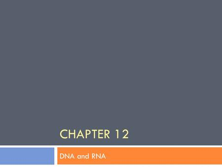 CHAPTER 12 DNA and RNA. 12-1: DNA  How was DNA discovered?  Fredrick Griffith  Oswald Avery  Hershey & Chase  Watson & Crick.