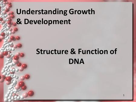 11 Structure & Function of DNA Understanding Growth & Development.