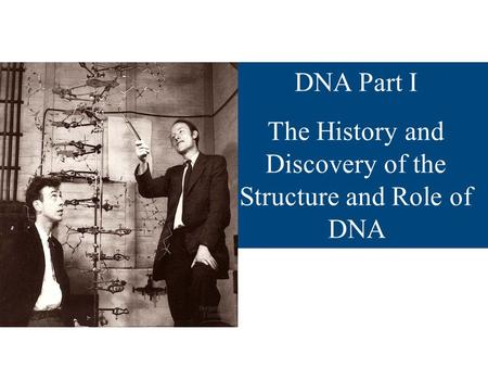 DNA Part I The History and Discovery of the Structure and Role of DNA.