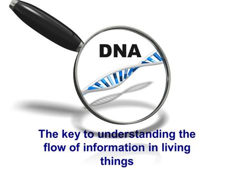 DNA The key to understanding the flow of information in living things.