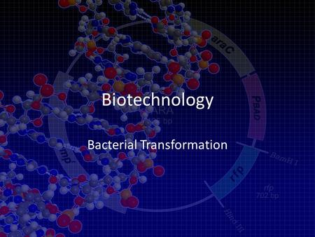 Biotechnology Bacterial Transformation. Biotechnology Can Be Used to Treat Disease.