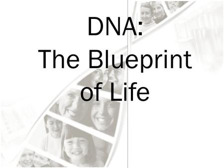 DNA: The Blueprint of Life. DNA & Scientists Griffith and Transformation In 1928, British scientist Fredrick Griffith was trying to learn how certain.