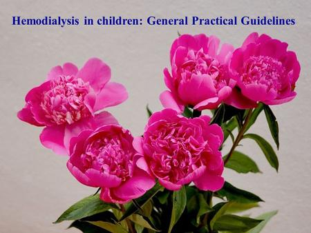 Hemodialysis in children: General Practical Guidelines.
