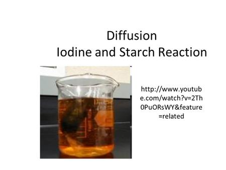 Diffusion Iodine and Starch Reaction  e.com/watch?v=2Th 0PuORsWY&feature =related.