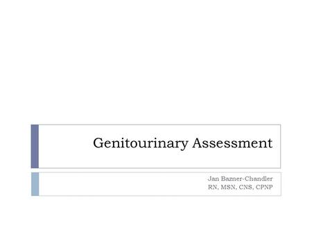 Genitourinary Assessment Jan Bazner-Chandler RN, MSN, CNS, CPNP.