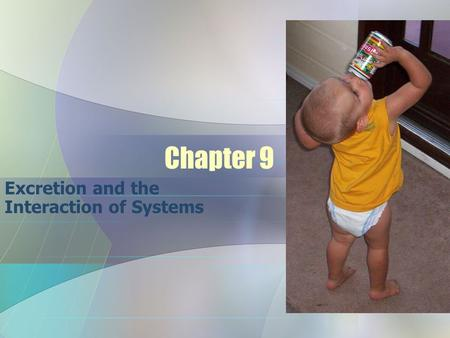Excretion and the Interaction of Systems