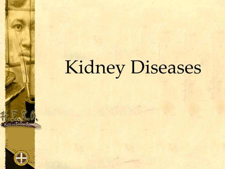 Kidney Diseases. What is the kidney? The kidneys are two bean-shaped organs, each about the size of a fist. They are located in the middle of the back,