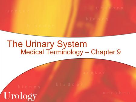 Medical Terminology – Chapter 9