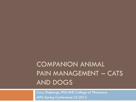 Companion Animal Pain Management – Cats and Dogs