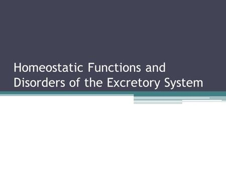 Homeostatic Functions and Disorders of the Excretory System.