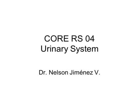 CORE RS 04 Urinary System Dr. Nelson Jiménez V.. QUICK REVIEW OF ELIMINATION Lungs eliminate CO2 Sweat glands eliminate excess heat, salt Digestive tract-