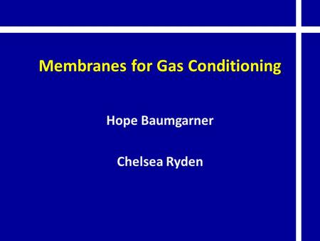Membranes for Gas Conditioning