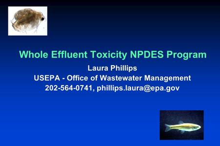 Whole Effluent Toxicity NPDES Program Laura Phillips USEPA - Office of Wastewater Management 202-564-0741,