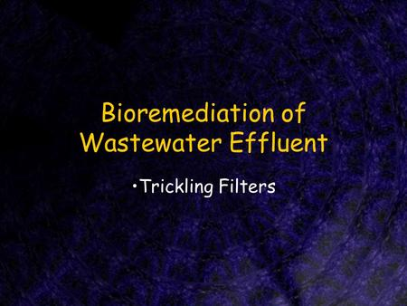 Bioremediation of Wastewater Effluent Trickling Filters.