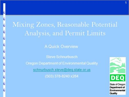 1 Mixing Zones, Reasonable Potential Analysis, and Permit Limits A Quick Overview Steve Schnurbusch Oregon Department of Environmental Quality