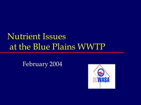Nutrient Issues at the Blue Plains WWTP February 2004.