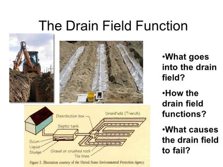 The Drain Field Function What goes into the drain field? How the drain field functions? What causes the drain field to fail?