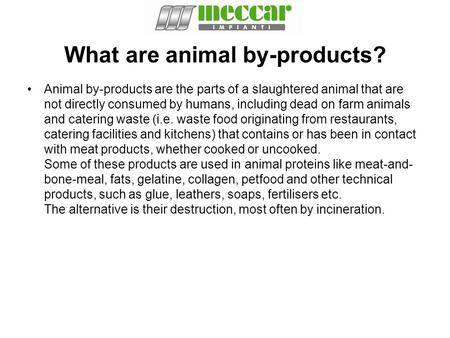 What are animal by-products?
