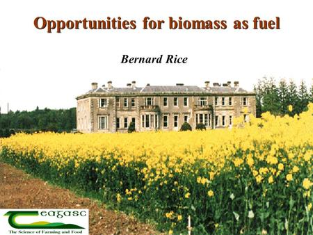 Opportunities for biomass as fuel Bernard Rice. Why biofuels now? Increasing mineral fuel prices Need for new farm enterprises Need for secure fuel supply.
