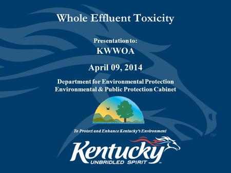 Whole Effluent Toxicity Presentation to: KWWOA April 09, 2014 Department for Environmental Protection Environmental & Public Protection Cabinet To Protect.
