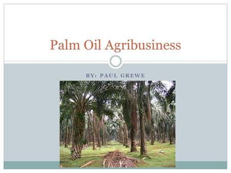 BY: PAUL GREWE Palm Oil Agribusiness. Sorry… In The Beginning According to The World History of Food, palm oil dates back as far as 3000B.C. (2000).