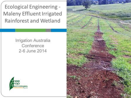Ecological Engineering - Maleny Effluent Irrigated Rainforest and Wetland Irrigation Australia Conference 2-6 June 2014.