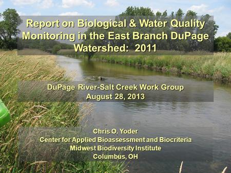 Report on Biological & Water Quality Monitoring in the East Branch DuPage Watershed: 2011 DuPage River-Salt Creek Work Group August 28, 2013 Chris O.