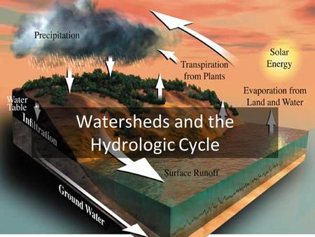 Watersheds and the Hydrologic Cycle. The Global Hydrologic Cycle.