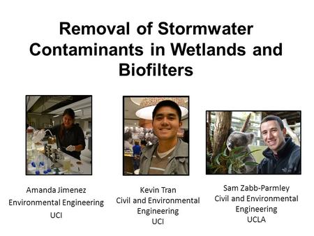 Removal of Stormwater Contaminants in Wetlands and Biofilters Amanda Jimenez Environmental Engineering UCI Kevin Tran Civil and Environmental Engineering.