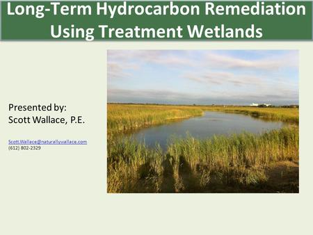 Presented by: Scott Wallace, P.E. (612) 802-2329 Long-Term Hydrocarbon Remediation Using Treatment Wetlands.