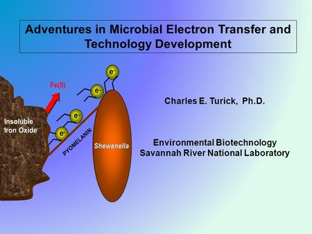 Adventures in Microbial Electron Transfer and Technology Development Charles E. Turick, Ph.D. Environmental Biotechnology Savannah River National Laboratory.