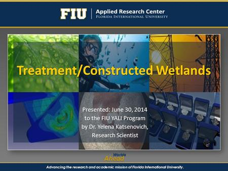 Advancing the research and academic mission of Florida International University. WorldsAhead Treatment/Constructed Wetlands Presented: June 30, 2014 to.