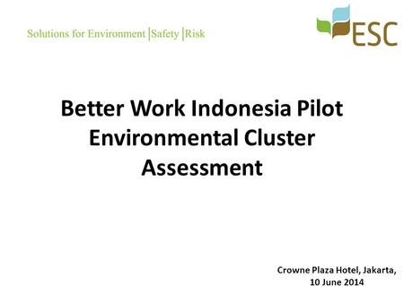 Better Work Indonesia Pilot Environmental Cluster Assessment Crowne Plaza Hotel, Jakarta, 10 June 2014.