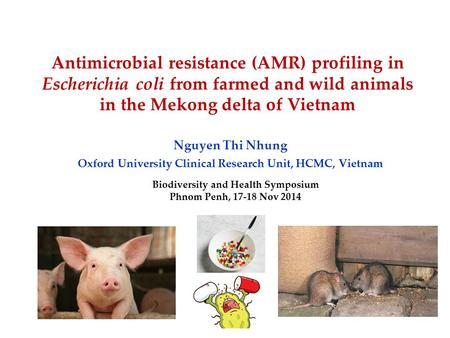 Antimicrobial resistance (AMR) profiling in Escherichia coli from farmed and wild animals in the Mekong delta of Vietnam Nguyen Thi Nhung Oxford University.