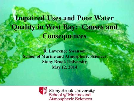 Impaired Uses and Poor Water Quality in West Bay: Causes and Consequences R. Lawrence Swanson School of Marine and Atmospheric Sciences Stony Brook University.