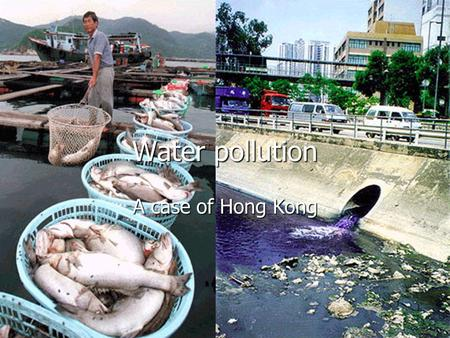 Water pollution A case of Hong Kong. Water conditions in HK Beach water quality Beach water quality Beach water quality Beach water quality Marine water.