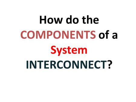 How do the COMPONENTS of a System INTERCONNECT?  Animation of Digestion.