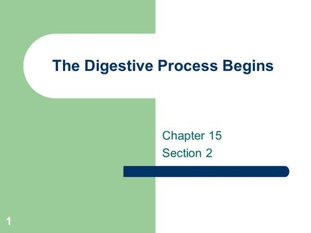 The Digestive Process Begins