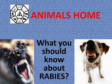 ANIMALS HOME What you should know about RABIES?. What is rabies? Rabies is a dangerous disease caused by virus. Around the world rabies kills 50,000 people.