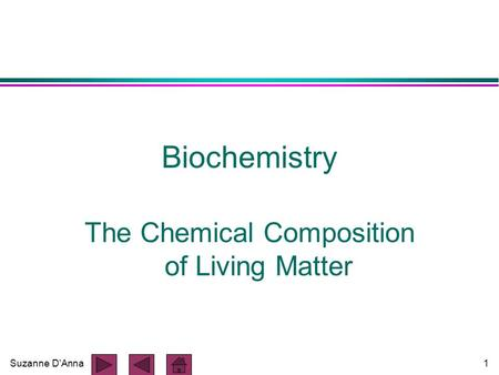 Suzanne D'Anna1 Biochemistry The Chemical Composition of Living Matter.