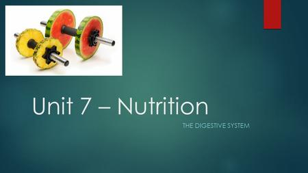 Unit 7 – Nutrition THE DIGESTIVE SYSTEM. Discussion…  What do you remember about digestion from 7 th grade?  What vital organs are a part of digestion?