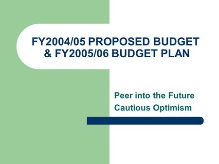 FY2004/05 PROPOSED BUDGET & FY2005/06 BUDGET PLAN Peer into the Future Cautious Optimism.