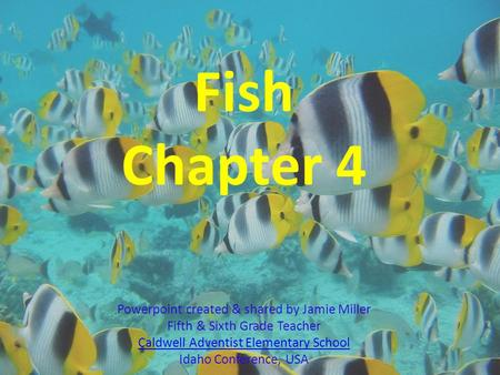 Fish Chapter 4 Powerpoint created & shared by Jamie Miller Fifth & Sixth Grade Teacher Caldwell Adventist Elementary School Idaho Conference, USA Caldwell.