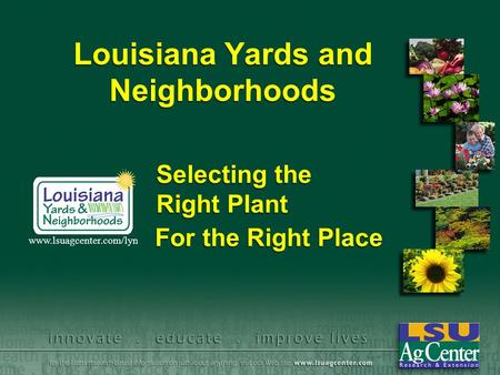 Louisiana Yards and Neighborhoods For the Right Place www.lsuagcenter.com/lyn Selecting the Right Plant.