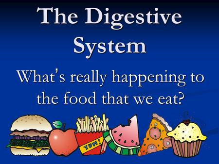 The Digestive System What ' s really happening to the food that we eat?
