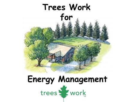 Energy Management Trees Work for. 1. Why do we plant trees? Add Beauty – Spring flowers, fall foliage color, interesting bark, fragrance – Screen unwanted.