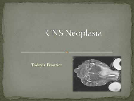 CNS Neoplasia Today's Frontier.